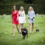 Dogs in the Wedding Party