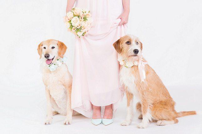 Unique-Wedding-Ideas005