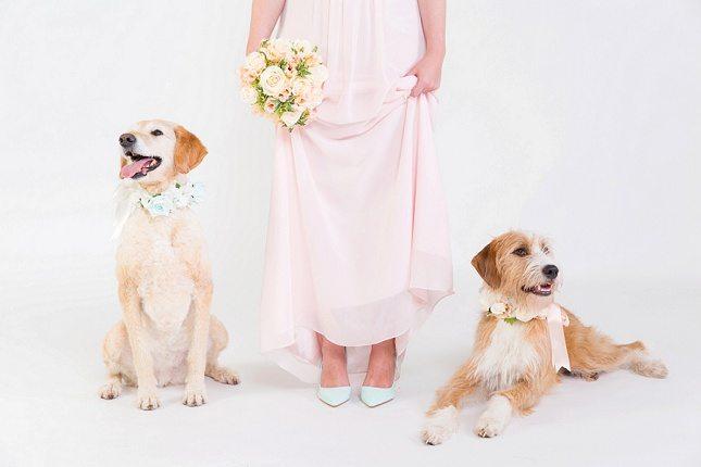Unique-Wedding-Ideas006