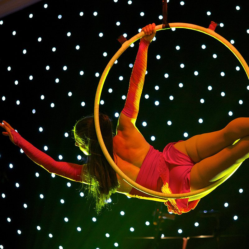 Autumnal-50th-Birthday-Party12-Aerial-Performer